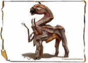IMG-BestiaryShallowBEAK01LARGE.png